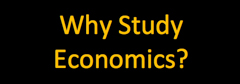Why Study Economics? button